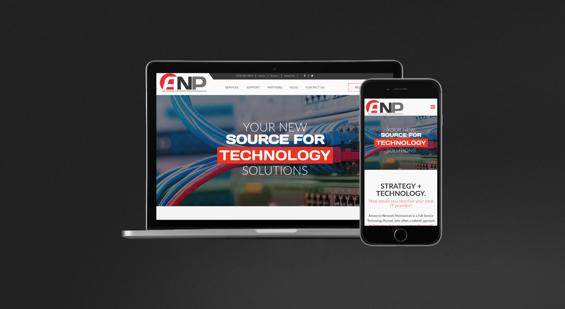 Advanced Network Professionals Responsive Web Design