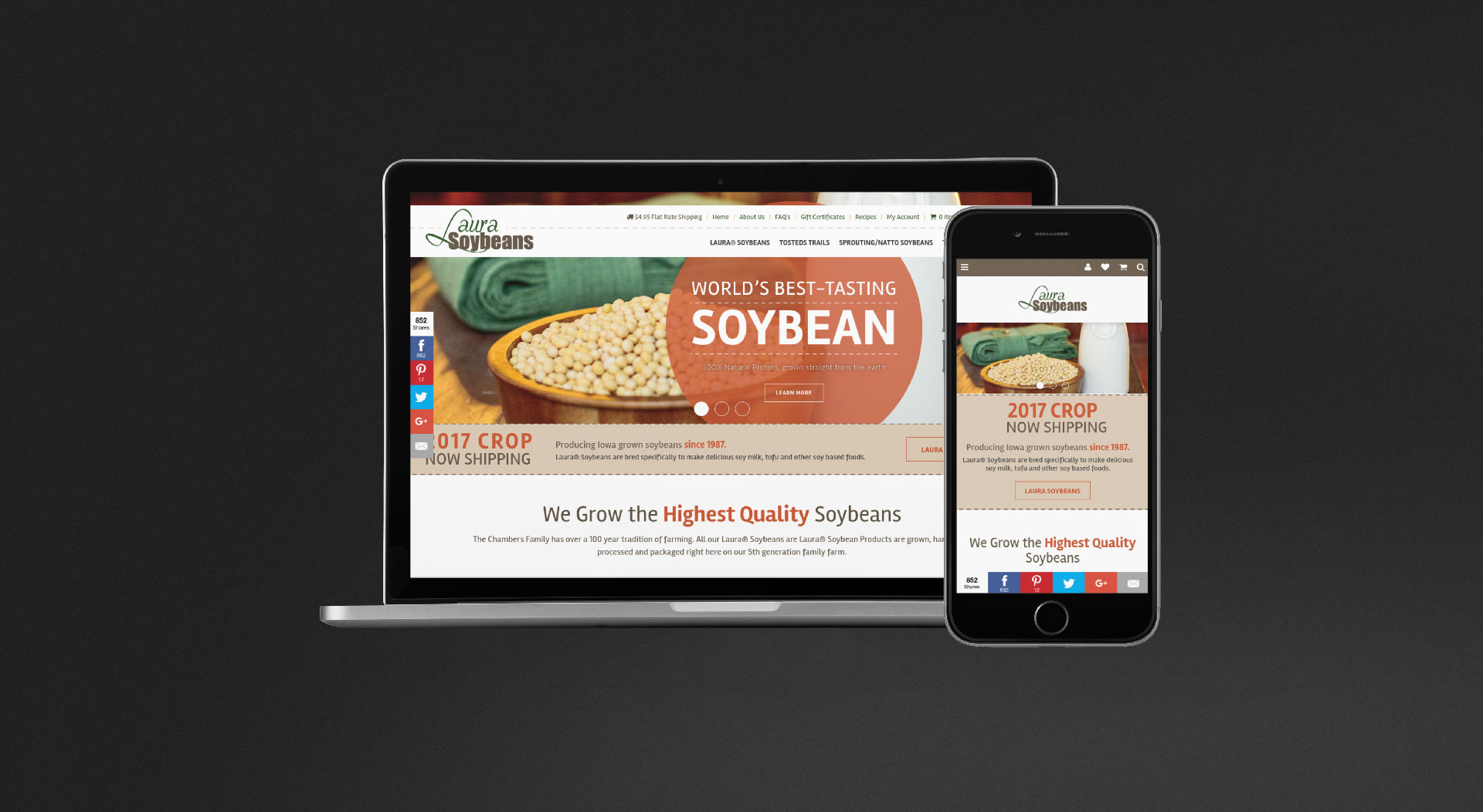 Laura Soybeans Responsive Web Design